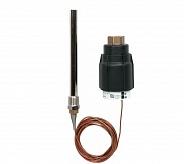 Danfoss (Данфосс) AVT Термостатический элемент 3/4 (065-0605)